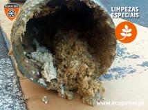 2020-09-17-limpezaespecial-03